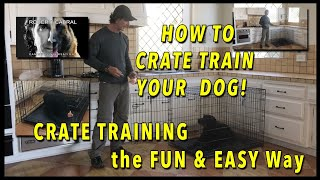 CRATE Training Your Dog   EVERYTHING You Need to Know to Get YOUR DOG to LOVE the CRATE