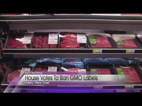Now Trending: GMO's banned