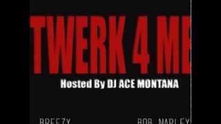 Twerk 4 Me - Breezy ft Bob Narley (Hosted By DJ Ace Montana)