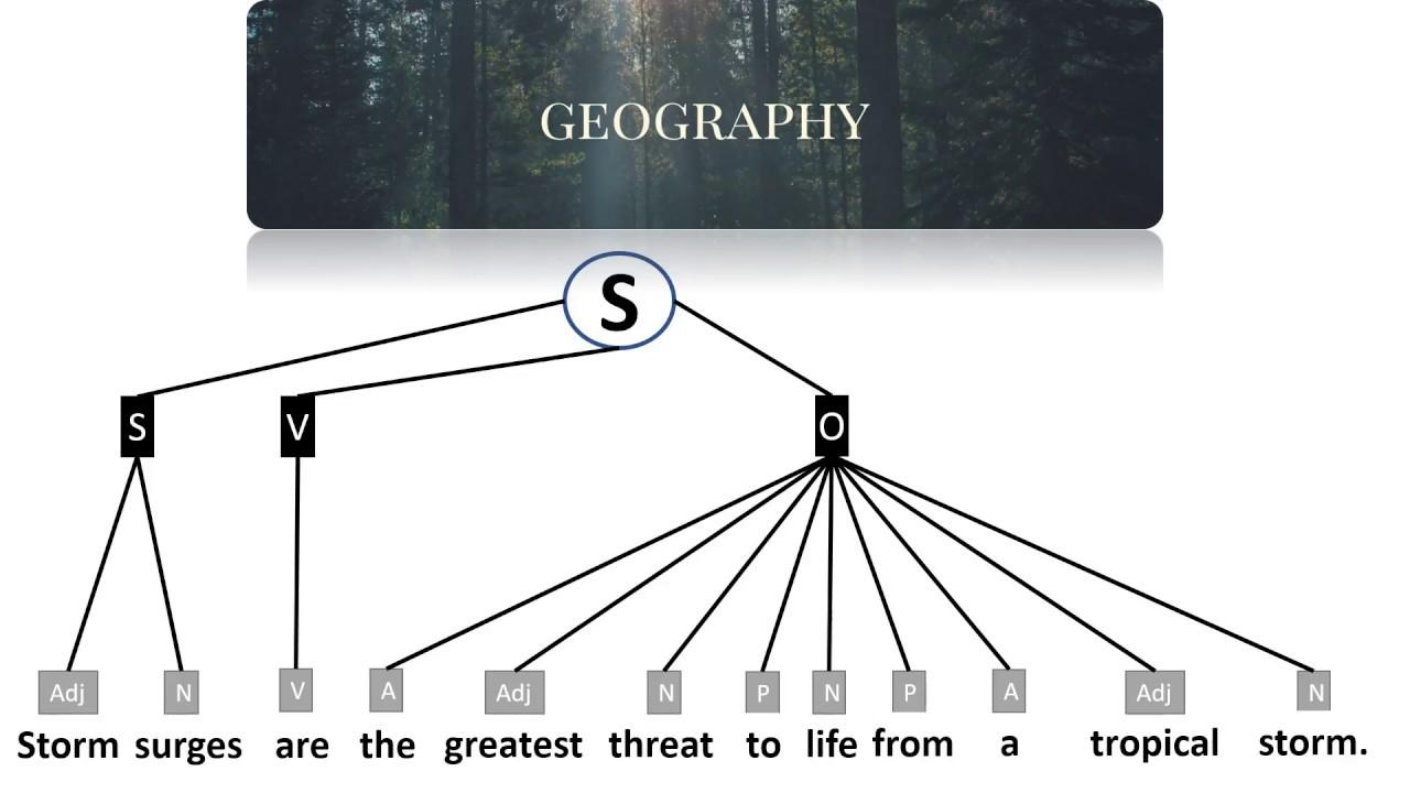 hight resolution of tree diagram adjective phrase
