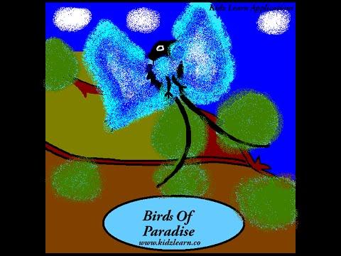 சொர்க்கத்தில் ப்ளூ பறவைகள் - Birds Of Paradise in Tamil - Kidz Learn Applications™®©2015