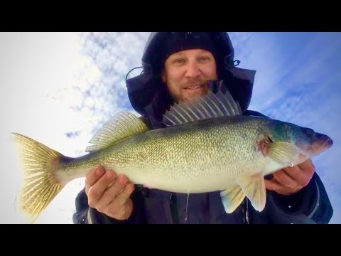 HUGE Walleye Ice Fishing Ultralight Rippin Raps!!!