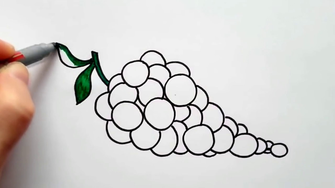Üzüm resmi nasıl çizilir