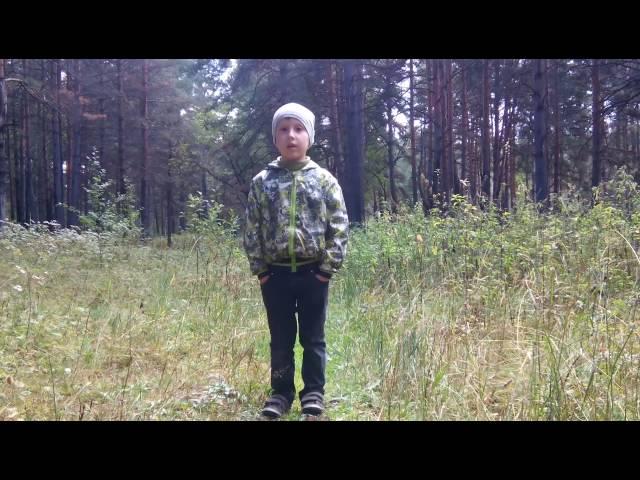 Алексей Медянцев читает произведение «Октябрьский рассвет» (Бунин Иван Алексеевич)