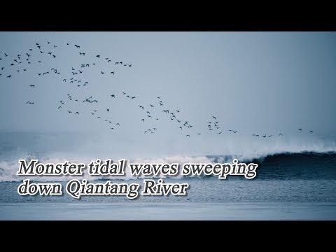 Live: Monster tidal waves sweeping down Qiantang River钱塘江观潮