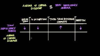 Anemia of Chronic Disease vs. Iron Deficiency Anemia