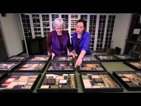 Tangible Things — Discovering History Through Artworks | HarvardX on edX | Course About Video