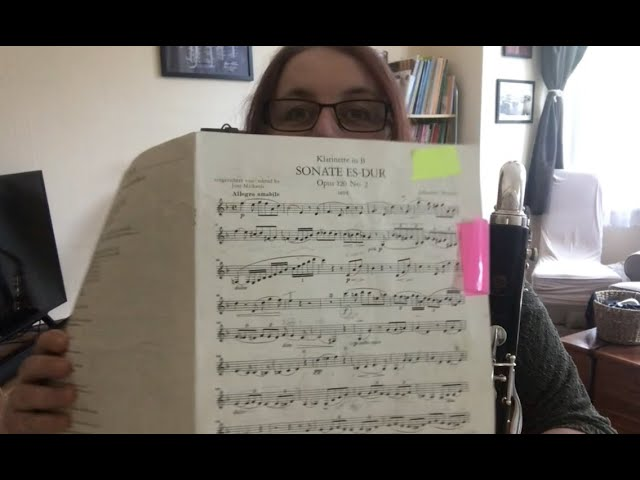 Brahms. Bass Clarinet. How hard can it be?
