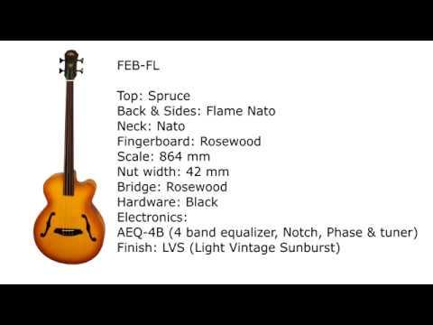 ARIA FEB-FL/F ACOUSTIC BASS GUITAR