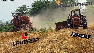 Laverda M120 | Gallignani 7100 | OM615 |Old Threshing and Baling | Trebbiatura e Pressatura D