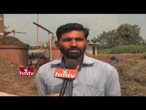 Tobacco Production | Lemon Grass( Nimma Gaddi ) Farming Information Guide | Nela Talli | HMTV