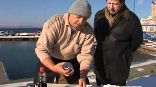 morskaya kapusta