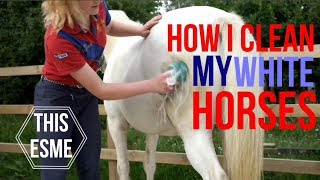 How I clean my white horses | This Esme