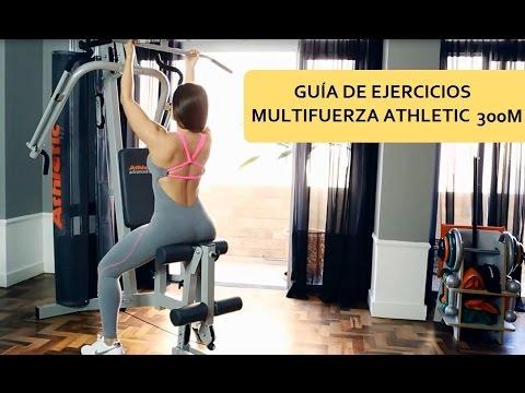 guia de ejercicios para gimnasio pdf
