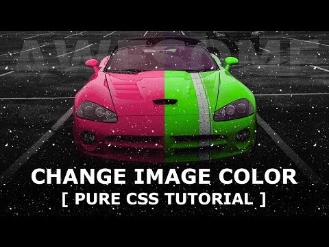 Change Image Color On Hover Using CSS Mix-Blend-Mode   Pure CSS Hover Effects