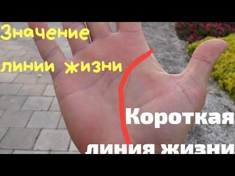 Линия жизни//что показывает//короткая линия и дата смерти на руке. Хиромантия