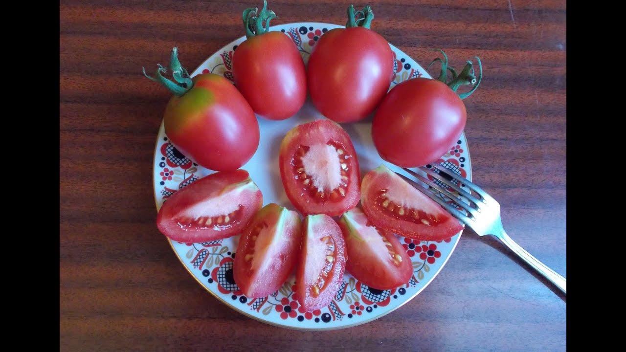 11 фев 2014. Для наших мест, признанных зоной рискованного земледелия, скороспелость томатов — одно из важных преимуществ. Это понимают и селекционеры, и производители семян. Не случайно количество ранних и ультраранних сортов и гибридов томата (с началом плодоношения менее чем.