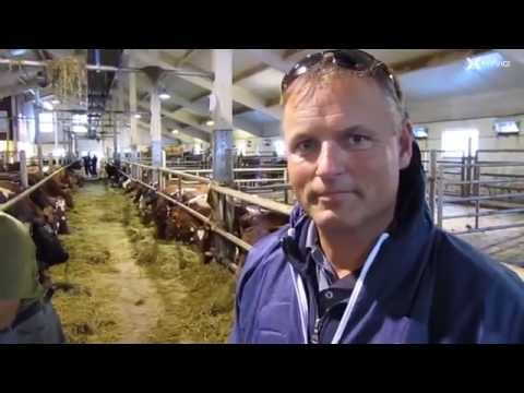 ABS Sales Manager visiting Norwegian Red dairy farm, Norway.
