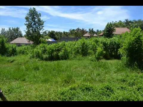 Canggu land for sale in Bali - TJCG009.wmv
