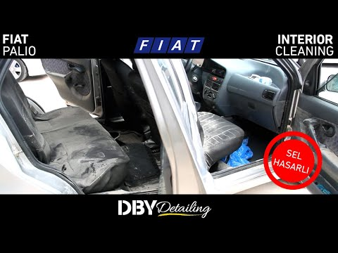 Sel Hasarı! | Fiat Palio Detaylı İç Temizlik & Sterilizasyon Uygulamaları | DBY Detailing