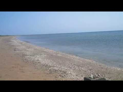 Wild beach of Caspian Sea