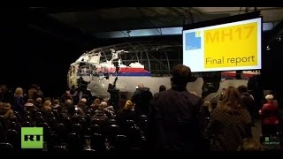 LIVE: Dutch Safety Board to announce final report on MH17