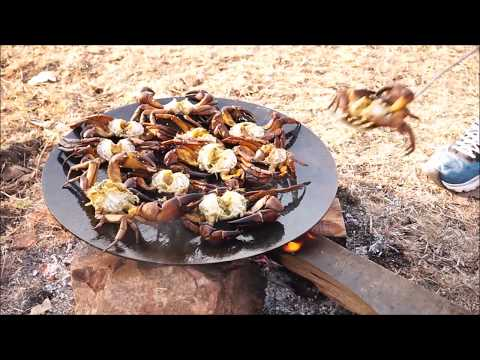 Thumbnail: CRAB RECIPE INDIAN COOKING - CRAB FRY - COOKING 10 CRABS ON BIG BLACK PAN - FOREST COOKING