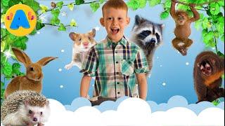 Контактный зоопарк кормим животных с рук пони дикобраз шиншилла и другие животные Petting zoo