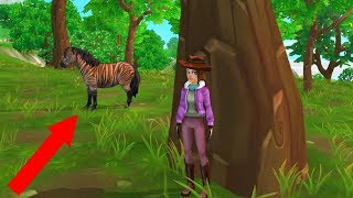 Catching A Zony ! Zebra Pony Mix - Buying A New Star Stable Horse - Roleplay Video