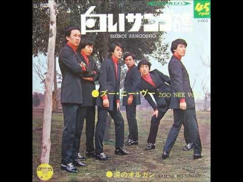 ♪視聴No.2 ズー・ニー・ヴー Zoo Nee Voo/白いサンゴ礁 Shiroi Sangosho (1969年)