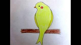 かなりや 西條八十作詞・成田為三作曲 Canary