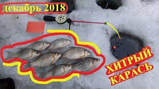 зимняя рыбалка на карася декабрь 2018