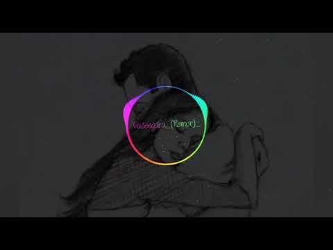 Vaseegara Remix