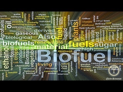 Biofuel Discovery can Solve World Energy Crisis