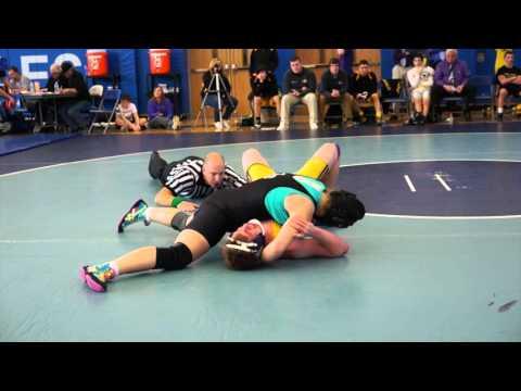 2014/2015 High School Wrestling AAA PA