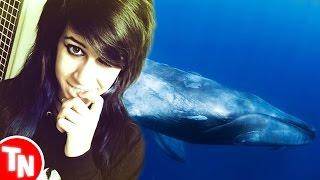 Hannah Mayers está fazendo o desafio da Baleia Azul!?
