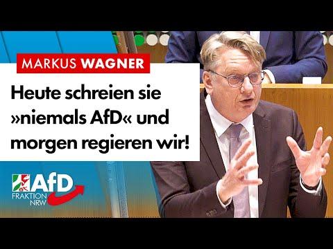 """Heute schreien sie """"niemals AfD"""" und morgen regieren wir! – Markus Wagner (AfD)"""