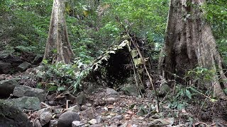Make shelter, fire and fishing, survival in the tropical rainforest, ep 35