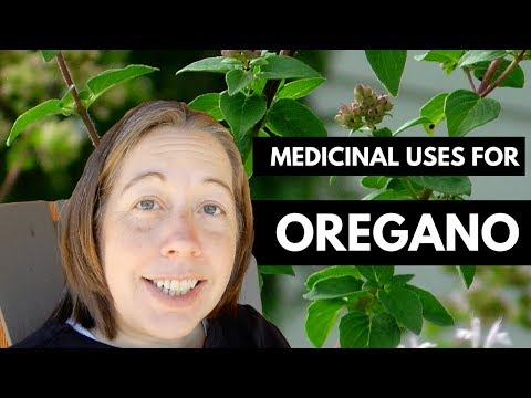 Using Oregano as Medicine (Great for Colds & Coughs!)