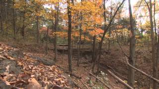 Students Visit Blackacre Nature Preserve | Education Matters | KET