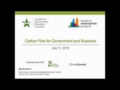 The Carbon Risk for Government and Business
