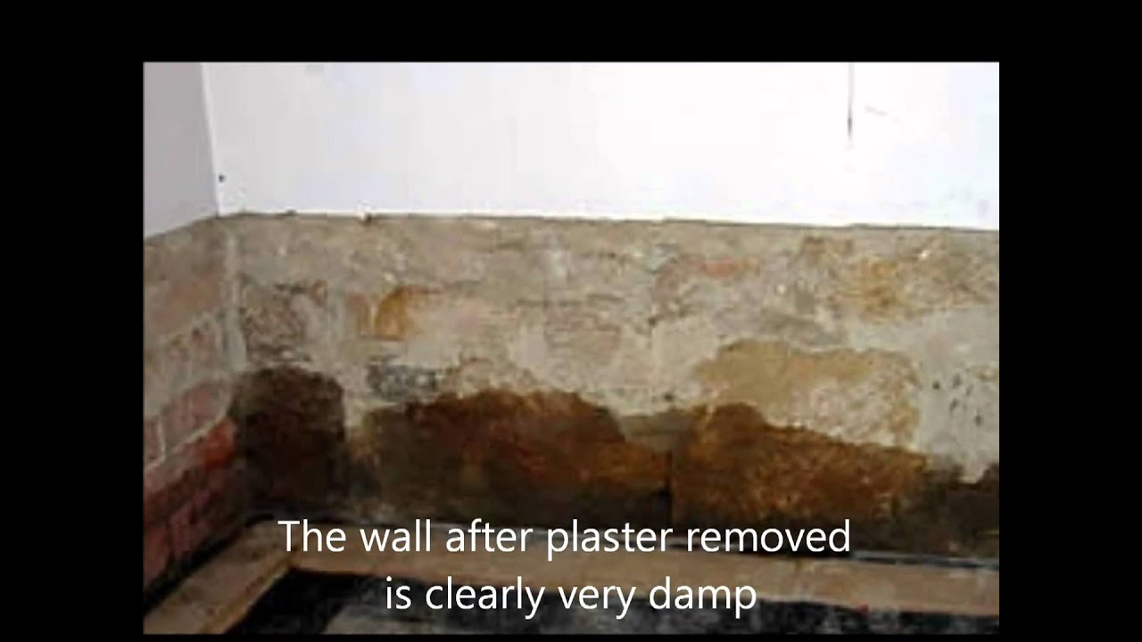 Exceptional Rising Damp Causes And Cure   YouTube