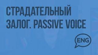 Страдательный залог. Passive Voice. Формы страдательного залога