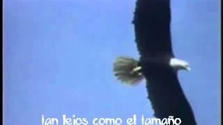Vuela aguila - Tercer cielo