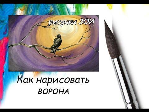 Рисунок Как нарисовать ворона. Как нарисовать птицу.