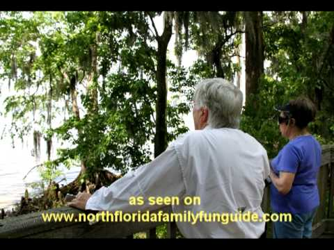The Mandarin Museum & Historical Society - Walter Jones Historical Park - Jacksonville, Florida