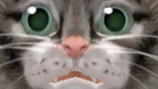 Game Cats - Petz Catz