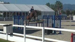 6yo final Jump Off /lord Thuder Olivia Nova