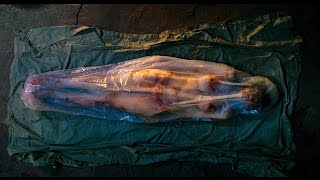 40 Most Disturbing And Gory Movies That You Shouldn't Watch