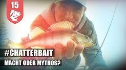 CHATTERBAIT und BARSCH? Das PASST !!!